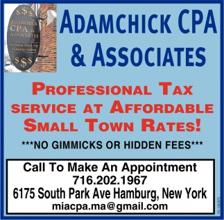 Professional Tax Service at Affordable Small Town Rates!