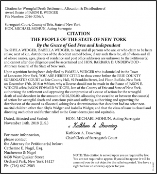 Citation The People Of The State Of New York